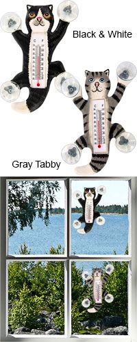 Funds 14 bowls of food.  Clinging Kitty Outdoor Thermometer at The Animal Rescue Site