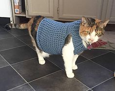 Cat sweater, to keep your cat warm. Along the neck, and the bottom have a ribbed edging, to give it a bit of style. This cat sweater easily slips on over your cat's head, so no struggling with buttons.