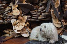 """The Best Greek Sandals!! Melissinos """"the poet sandal maker"""""""