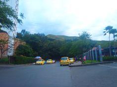 So many taxis