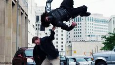 You will never find Bucky flying ever again