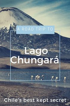 Get far off the beaten path when you travel in Chile, by taking a road trip to Lago Chungara. #DreamHolidayContest