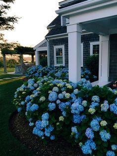 Farmhouse Landscaping Front Yard Ideas: 20 Gorgeous Photos https://www.onechitecture.com/2017/10/12/farmhouse-landscaping-front-yard-ideas-20-gorgeous-photos/