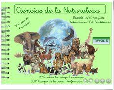 """Unidad 4 de Ciencias de la Naturaleza de 3º de Primaria: """"Los animales"""""""