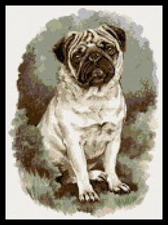 Pug Dog Counted Cross Stitch Kit by Yiota's XStitch, http://www.amazon.com/dp/B006ZN112M/ref=cm_sw_r_pi_dp_lTuPpb0J5E532