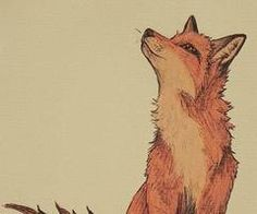Nice fox drawing!