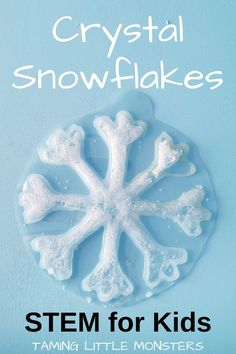 Learn how to grown crystal snowflakes with this STEAM activity for kids from Taming Little Monsters. Your kids will love creating this easy winter craft using science. Watch the tutorial or read the DIY instructions to see how. Stem Science, Easy Science, Science Experiments Kids, Fine Motor Activities For Kids, Steam Activities, Winter Activities, Winter Crafts For Kids, Kids Crafts, Snow Crafts