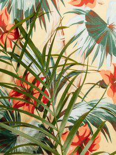 Ryan Duffin: una naturaleza con mucho color