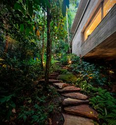 Jungle House by Studio Brazil Nestled in the dense vegetation on the paulista shore in the region of the Rain Forest, the Jungle House (Casa Na Mata) is designed by Brazilian architecture Studio to optimize the connection between architecture and nature. Jungle House, Forest House, Landscape Architecture, Architecture Design, Futuristic Architecture, Dona Carolina, Brazilian Rainforest, Jardin Luxuriant, Studio Mk27