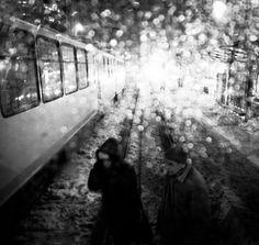 Copyright © Dorel F. (Romania)