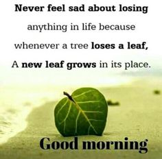Good Morning Quotes Prepossessing Good Morning  Good Morning Wishes  Pinterest  Inspirational . Design Ideas