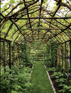 "This demonstrates what it means ""to be in accordance with nature."" Let sun-loving plants provide shade for those that require shade, and both will flourish. #Garden"