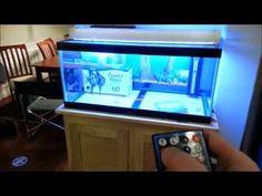 A Better DIY LED Aquarium Light - YouTube