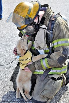 The adorable moment when Georgia's future service dogs met the state's brave firefighters