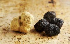 Truffles - the culinary jewels of Istria Croatian Cuisine, Croatian Recipes, Mediterranean Desserts, Truffles, Boards, Articles, Jewels, Planks, Jewerly