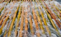 Leaching Bamboo