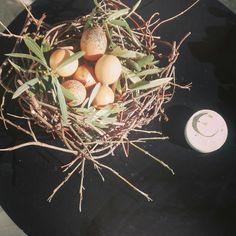 #easter #egg #concrete
