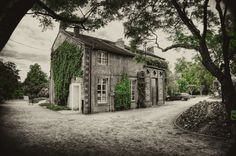 Nantes - Jardin des Plantes | Flickr - Photo Sharing!