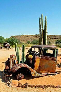 Truck looks a bit Cactus