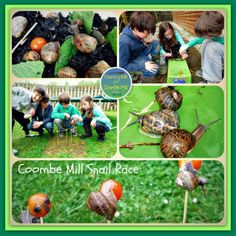 Snail Race and Awards with Country Kids http://www.coombemill.com/blog/post/2013/05/18/Country-Kids-from-Coombe-Mill.aspx