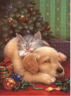 de - Your free picture community - Weihnachten Christmas Scenes, Christmas Animals, Christmas Cats, Christmas Pictures, Winter Christmas, Christmas Puppy, Illustration Noel, Christmas Illustration, Christmas Paintings