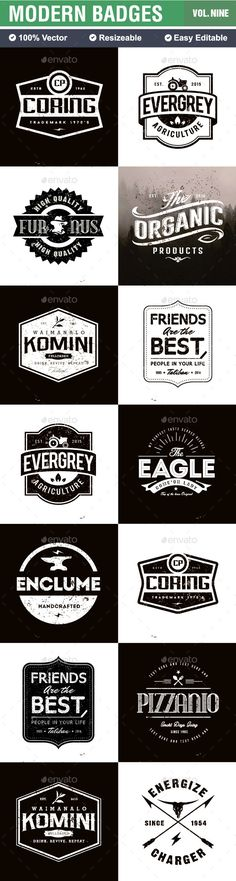 Badges and Logo | #badges #logo | Download: http://graphicriver.net/item/badges-and-logo/10449915?ref=ksioks