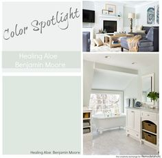 Avery's room -- Paint Color Spotlight: Healing Aloe from Benjamin Moore. A very light gray green blue transitional color, great for rooms with lots of natural lighting and those with only artificial light, too. Office Paint Colors, Bathroom Paint Colors, Paint Colors For Home, House Colors, Playroom Paint Colors, Light Blue Paint Colors, Bath Paint, Paint Colours, Bedroom Green