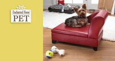 Enchanted Home™ Pet offers pet beds and accessories that complement any design style. Whether your home is modern or traditional, contemporary or classic, Enchanted Home ™ Pet has something that will match your aesthetic sensibility while keeping your pet comfortable and happy.