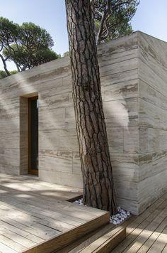 Casa in una Pineta / Massimo Fiorido Associati
