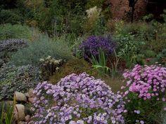 Blog w zasadzie ogrodowy: Sezon ogrodowy 2016 - podsumowanie