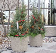 Holiday planters by Barrett Lawn Care. Greens include spruce tips of various sizes, eucalyptus branches, #dogwood branches, and birch branches. #holidaydecor #winterplanter #christmasdecor