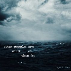 Some people are wild - let them be. - Jo Hilder