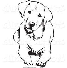 Royalty free canine clip art of a cute and curious labrador retriever dog lying down and tilting his head, over a white background. This dogs stock dog image was designed and digitally rendered by David Rey. Tattoo Pitbull, Dog Tattoos, Black Labrador Retriever, Labrador Puppies, Labrador Retrievers, Puppies Puppies, Retriever Puppies, Golden Retrievers, Animal Drawings