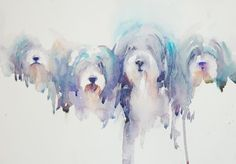 bearded collies - gorgeous watercolor