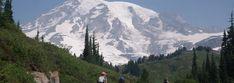 Mount Rainier – מסלול מאתגר וכיף ברמות על – על טיולים ומה שביניהם Mount Rainier, Mountains, Nature, Travel, Naturaleza, Viajes, Destinations, Traveling, Trips