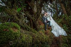 Aperture Production, Ringo Cheung, Hong Kong wedding photographer, Malaysia pre-wedding, ispwp, wppi, agwpja, wpja, hong kong photographer #prewedding #Malaysiaprewedding