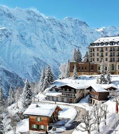 """Pascal Meier, MD,BMJ """"Magical - snow in #Switzerland this morning - winter has started! #Murren #Bern"""" Sourced and pinned by courtesy of @pascalmeier74 Thank you for sharing!"""