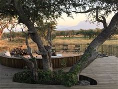 WeekendGetaways offers you an extensive selection within South Africa. Your adventure begins today. Terms Of Service, South Africa, Adventure, Plants, Travel, Viajes, Fairytail, Plant, Traveling