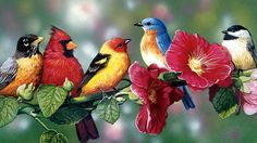 """Song of Solomon 2:11-13   """"For, behold, the winter is past; the rain is over and gone. The flowers appear on the earth; the time of the singing [of birds] has come, and the voice of the turtledove is heard in our land. The fig tree puts forth and ripens her green figs, and the vines are in blossom and give forth their fragrance. Arise, my love, my fair one, and come away."""""""