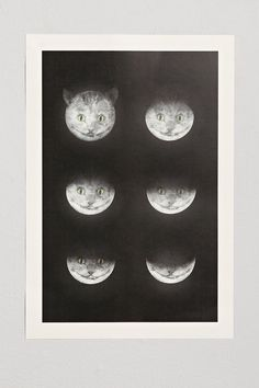 Eric Fan Cats Art Print - Urban Outfitters