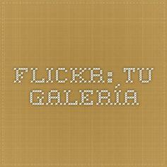 Flickr: Tu galería