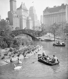"""doyoulikevintage: """"Boating in Central Park. NYC, New York """" New York Pictures, Old Pictures, Daytona Beach, Photos Du, Old Photos, Empire State Building, Puente Golden Gate, Photo New York, Ville New York"""