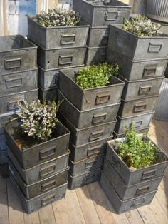 These are like the ones I have been selling.  Wow, what the plants add! KA