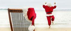 'Tis the season to be jolly' this holiday season with Moreton Island Adventures! #moretonisland #christmas #jolly