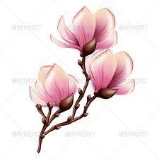 """Résultat de recherche d'images pour """"tattoo magnolia"""""""