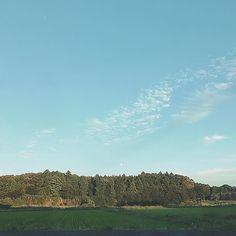 【natsunatsu_ys】さんのInstagramをピンしています。 《🌕 #iphone7camera #空 #雲 #月 #田んぼ #田舎 #森 #カコソラ #空が好きな人と繋がりたい #写真好きな人と繋がりたい #l4like #instafollow #instagood #sky #moon #pm #午後 #夕方》