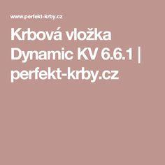 Krbová vložka Dynamic KV 6.6.1 | perfekt-krby.cz