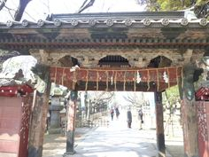 "Festa""Botan""「Ueno-Koen」(Parco), Ueno, Tokyo, Japan"