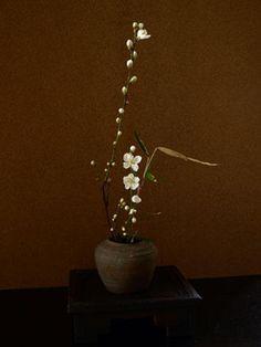 交織. ikebana