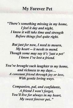 Pet Loss Quotes - Ever Memorial Grief Support When Pets . Dogs Tumblr, I Love Dogs, Puppy Love, Tatoo Dog, Dumbo Tattoo, Pet Poems, Cat Loss Poems, Dog Loss Poem, Jiff Pom